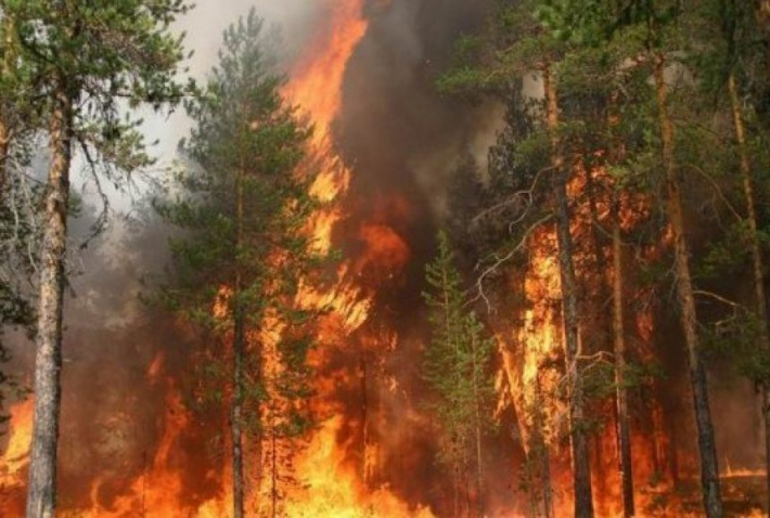 Через пожежонебезпечну ситуацію в країні владика Василь Івасюк видав звернення