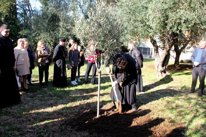 """Громада собору Святої Софії в Римі приєдналася до акції """"Посади дерево миру"""""""