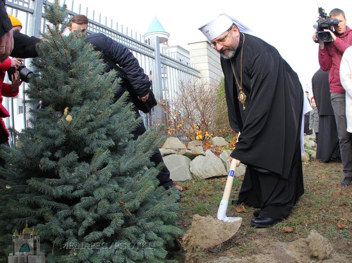 """Глава УГКЦ в рамках акції """"Посади дерево миру"""" закликає відмовитися від зрубаних живих ялинок з нагоди новорічних та різдвяних свят"""
